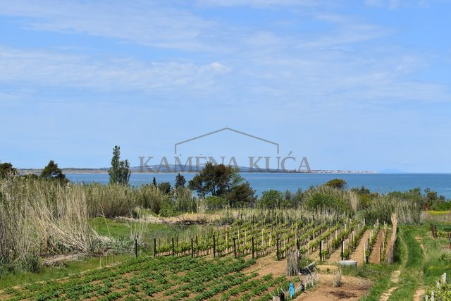 Vrsi - land of 1802 m2, with sea view from it, 250 m from the sea !!!